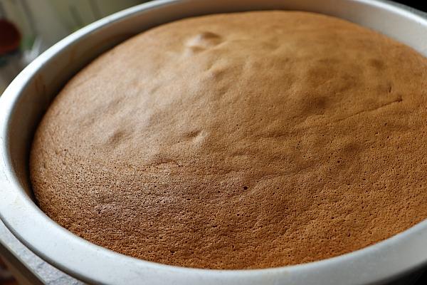 Baked sponge cake (Biskuit) in a pan